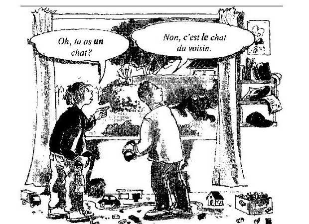 Определенный артикль, французский язык