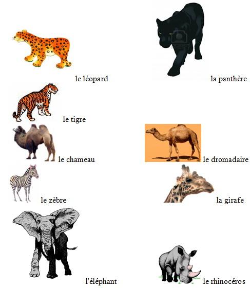 Животные на французском языке