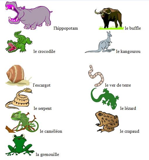 лексика по теме знакомство на французском