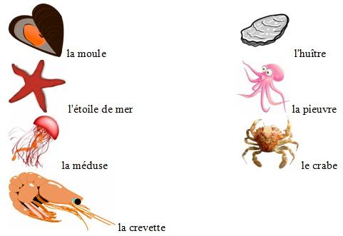 Мориске животные (рыбы, крабы, ракушки…) на французском языке