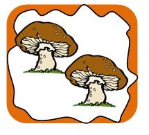 Des champignons (фр.)