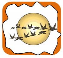 La migration des oiseaux (фр.)