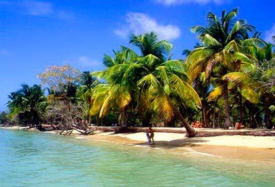 Путешествие. Мартиника.